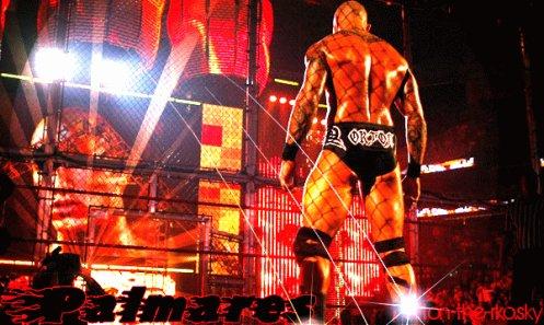 Palmares de Randy Orton :)