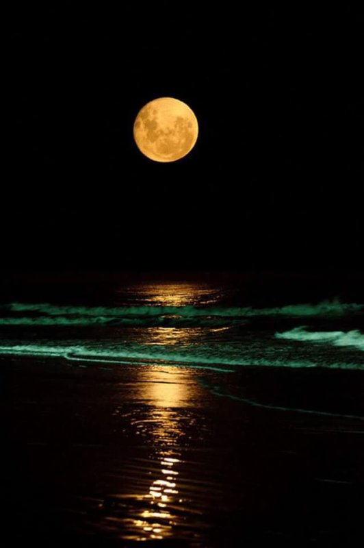 Bonne nuit....
