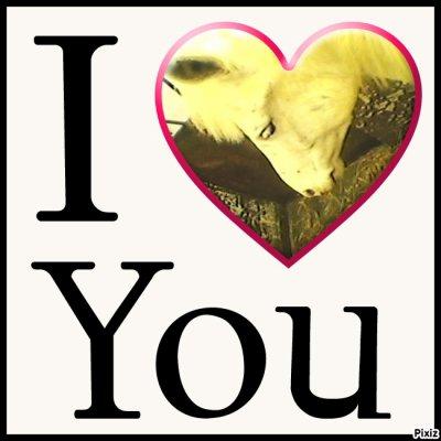 i love you mon coeur !!