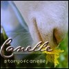 StoryOfCanelle
