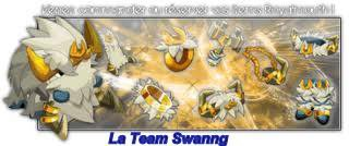 SwanngTeam