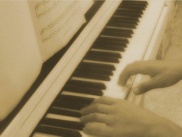 J'aime écouté des musiques au piano. Moi même j'avait un piano étant adolescente, qu'un de mes professeurs m'avait donner. Mais malheureusement comme beaucoup de chose de mon enfance, je ne l'ai plus à cause de ma vie passer avec mon ex... J'ai payer bien trop cher des choses qui avait des valeurs à mon c½ur pour un homme qui ne le mérité pas! En tout cas, je remercie Xavier de nous avoir partager un petit moment de douceur lorsqu'il c'est mis a joué! Je me suis fait plaisir et j'ai immortalisé tes doigts comme tu peux le voir ^^