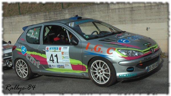 Rallye de Haute Provence 2011 - Fortunato/Peugeot 206 RC