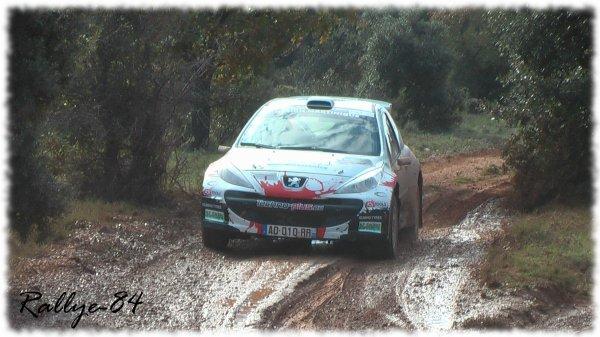 Terre de Vaucluse 2011 - Jean-Joseph/Peugeot 207 S2000