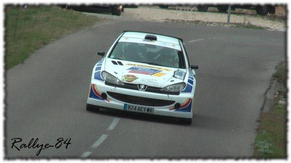 Rallye du Mistral 2011 - Viano/Peugeot 206 Maxi