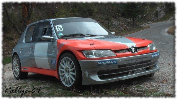 Téléthon de Murs 2011 - Peugeot 205