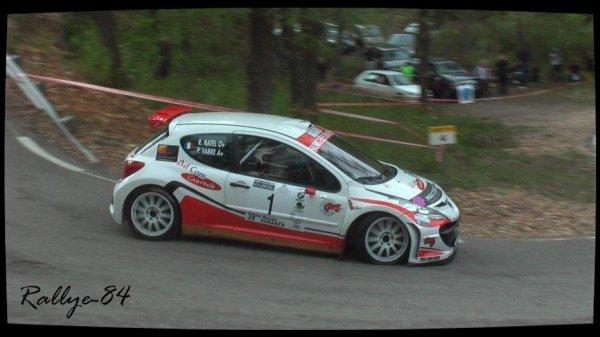 Ronde de la Durance 2012 - Fabre/Peugeot 207 S2000