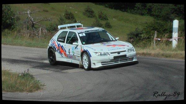 Rallye de la Drôme 2012 - Artru/Peugeot 306 Maxi