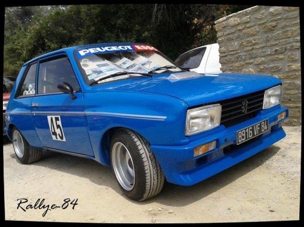 Course de côte de Propiac 2012 - Peugeot 1o4 Zs