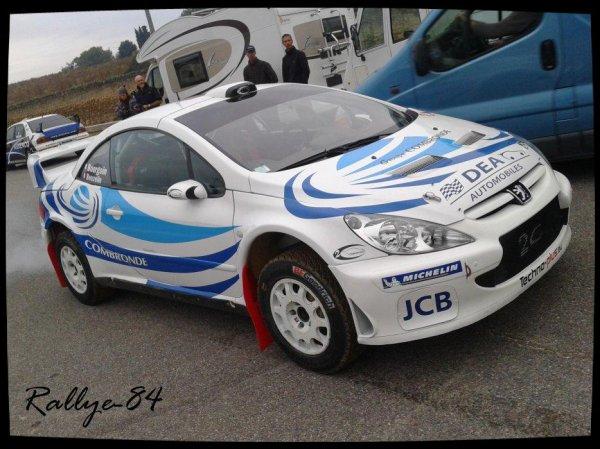 Rallye Terre de Vaucluse 2012 - Beuzelin/Peugeot 307 Wrc