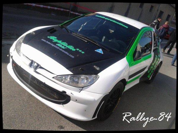 Rallye de Vaison 2013 - Rives/Peugeot 206