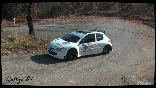 Rallye de Vaison 2013 - Gras/Peugeot 206 S1600