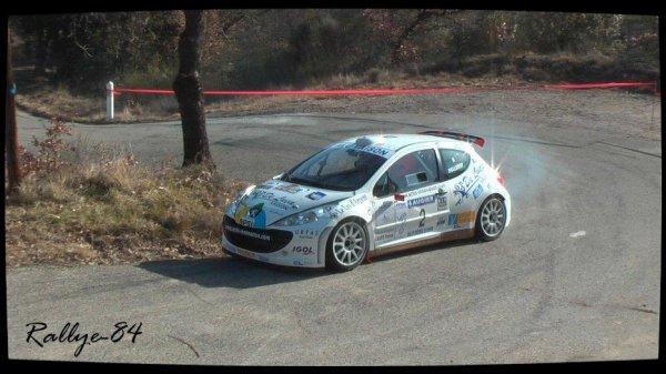 Rallye de Vaison 2013 - Pellerey/Peugeot 207 S2000