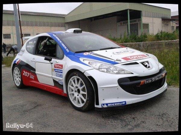 Rallye de Venasque 2014 - Ginhoux/Peugeot 207 S2000