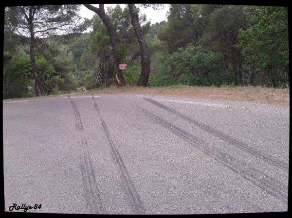 Rallye des Monts de Vaucluse 2014 - Pellerey/Peugeot 207 S2000