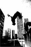 Photo de I-do-my-own-stunts