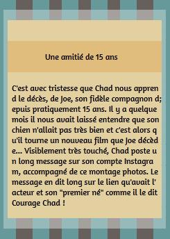 • Instagram ►  Le 17 Août 2015 - Chad Pleure La Mort de son Chien, Joe  Instagram