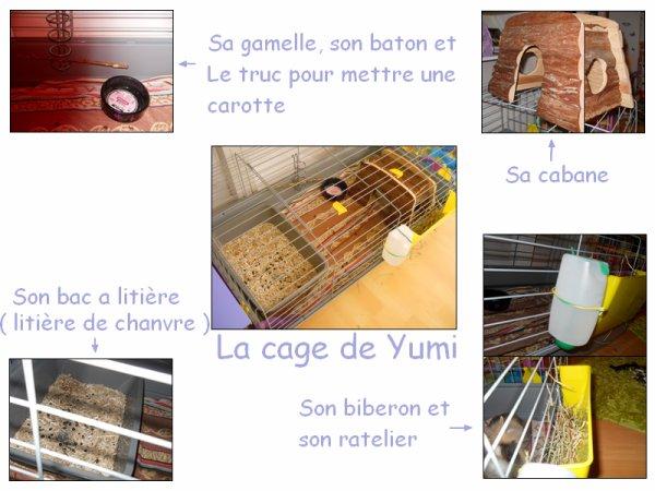 La cage de Yumi ♥