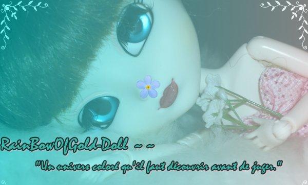 Un blog dollien parmi tant d'autres ~ RainBowOfGold-Doll ♥
