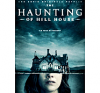 Série The Haunting of Hill House (Saison 1)