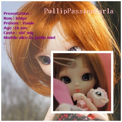Mes pullips ♥