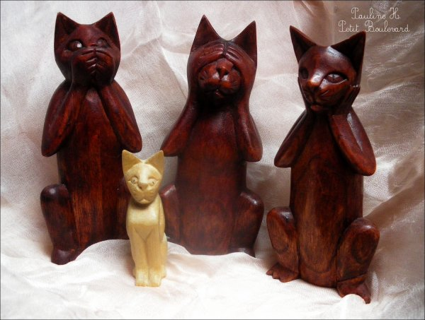 Trois sens, quatre chats.