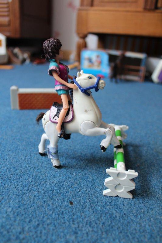 Aujourd'hui Léa a essayé son nouveau cheval Oasis
