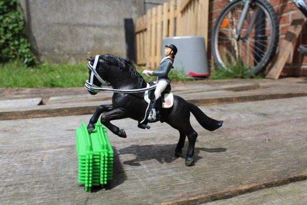 deux nouveaux chevaux ...