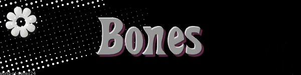 """Présentation de la série """"BONES"""""""