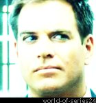 Biographie de Michael Weatherly (NCIS)
