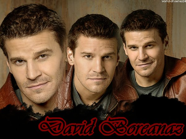 Biographie de David Boreanaz (Bones/Angel/BTVS)