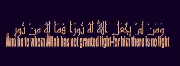 And he to whom Allah has not granted light-for him there is no light