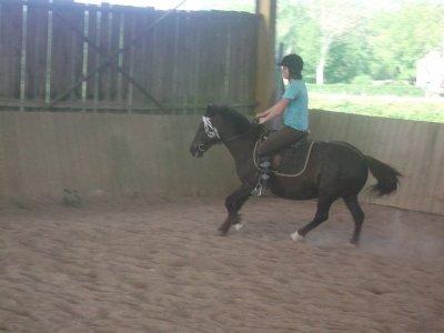 Moi je monte à cheval et fière d'etre cavalière