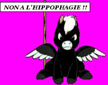Stop a l'hippophagie ! Y'en a marre !