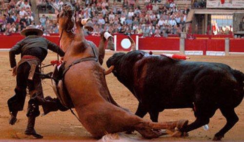 Les spécatcles indignes,les corridas,la tauromachie !