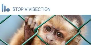 STOP VIVISECTION !!