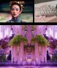 la princesse des glycines   un conte chinois