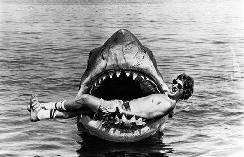le saviez vous?   les attaques de requin....et les attaques d'humains