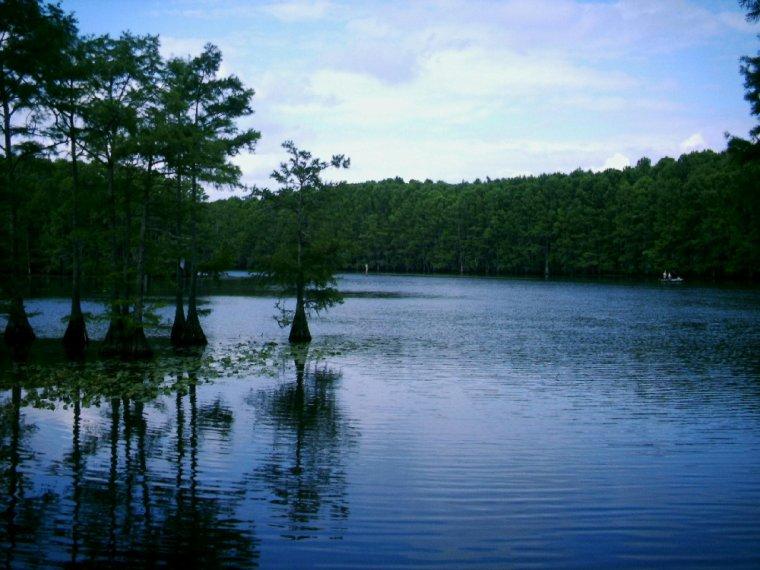 et si on changeait d'air? en allant auxUSA  ,sur les rives du lac Caddo