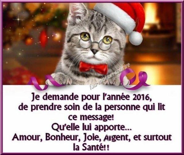 Bonne et Heureuse Année 2016 a tous mes Amis