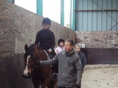 mi sur un cheval le cheval s'appele yota