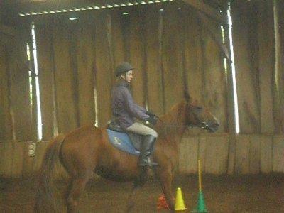 Une petite pensée pour les 3 chevaux que j'ai monter en 2 ans --> Jalara, Leader et Joyeuse !