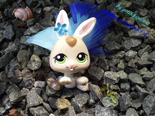 Lapin CUSTOMISER ! ;D