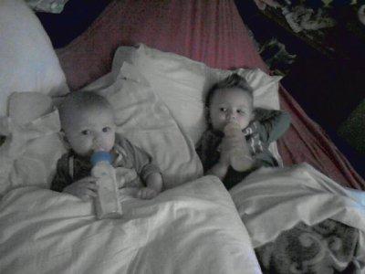 Mes Petits Frères (l)