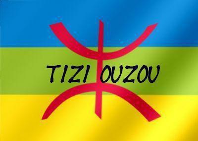 les drapeaux de mes origines Vietnam et Kabylie et Fière de l Etre