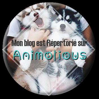 commande de Animolious : logo