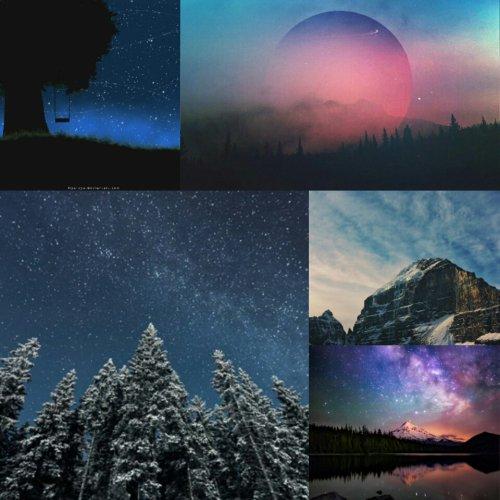 Inspiration Paysage: Forêt