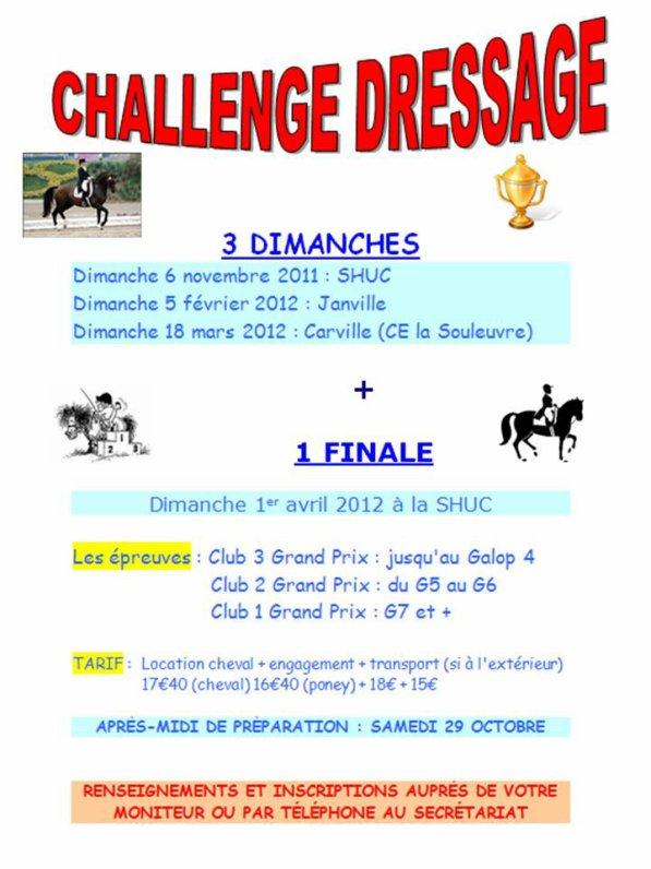Challenge Dressage