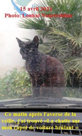 Chat échaudé craint l'eau froide.