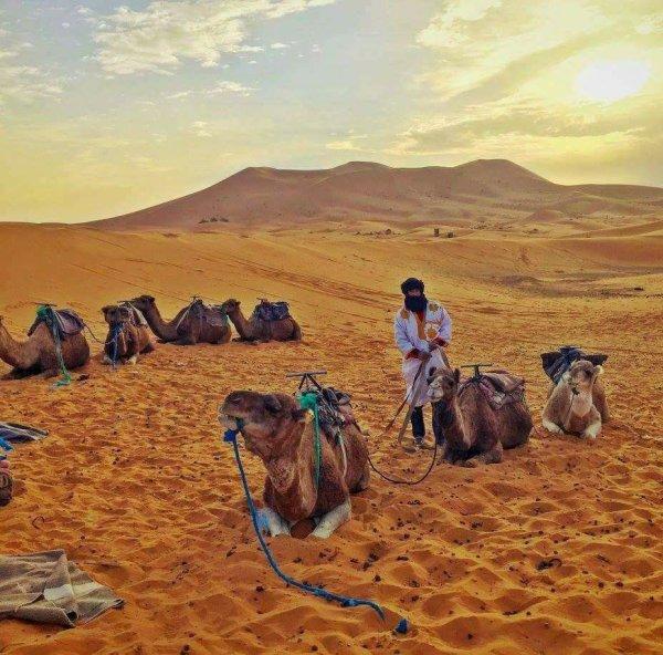 ET voila j aimerai ce désert